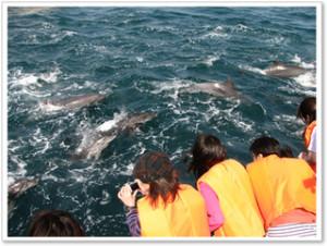 湯の郷くれよん(天草 観光)2014-5-22-3