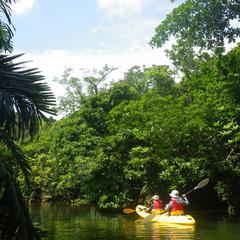 西表島ジャングルホテルパイヌヤマ-1