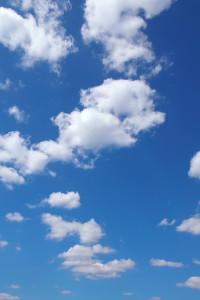 sky_beiz.jp_L10109