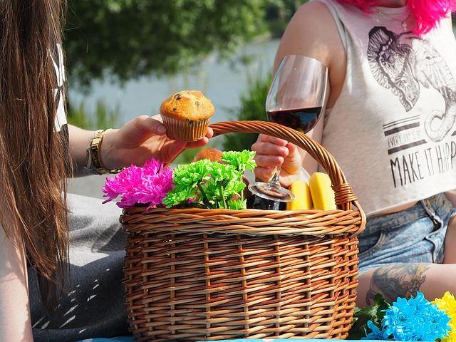 picnic-1456955_640_R
